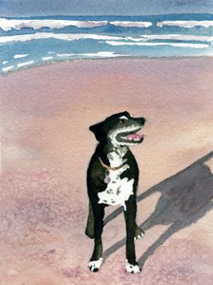 Heinz on Beach