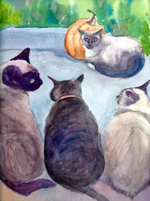 Boynton Cats